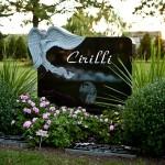 Example 13: Cirilli