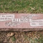 Example 25: Allwine