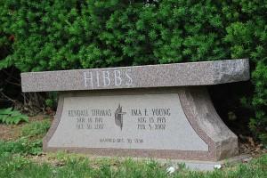 Example 9: Hibbs